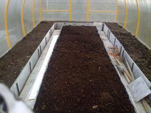 весной нужно подготовить почву в теплице