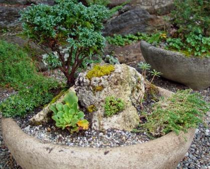альпийская горка миниатюрного размера