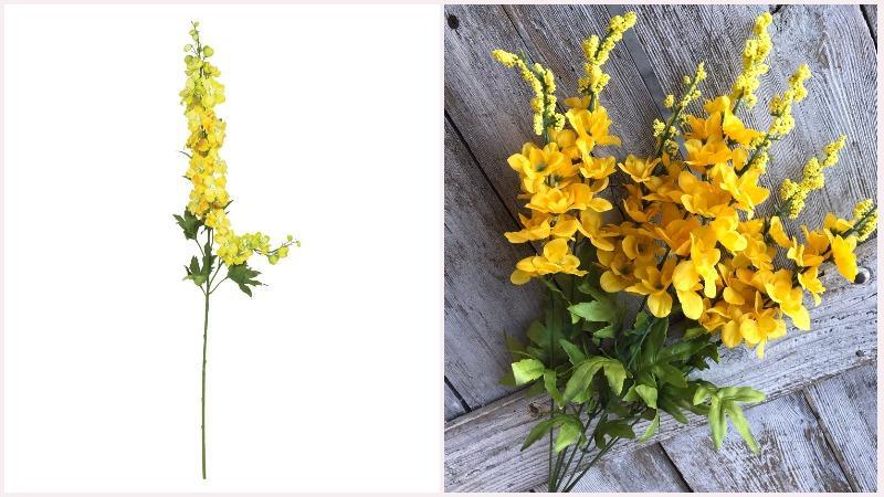 Живокость или шпорник может иметь развитое пирамидальное соцветие бледно желтого цвета