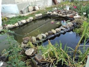 Строительство искусственного водоема своими руками продолжается