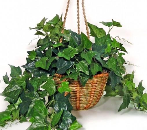 Декоративная листва украсит кухню и ванную