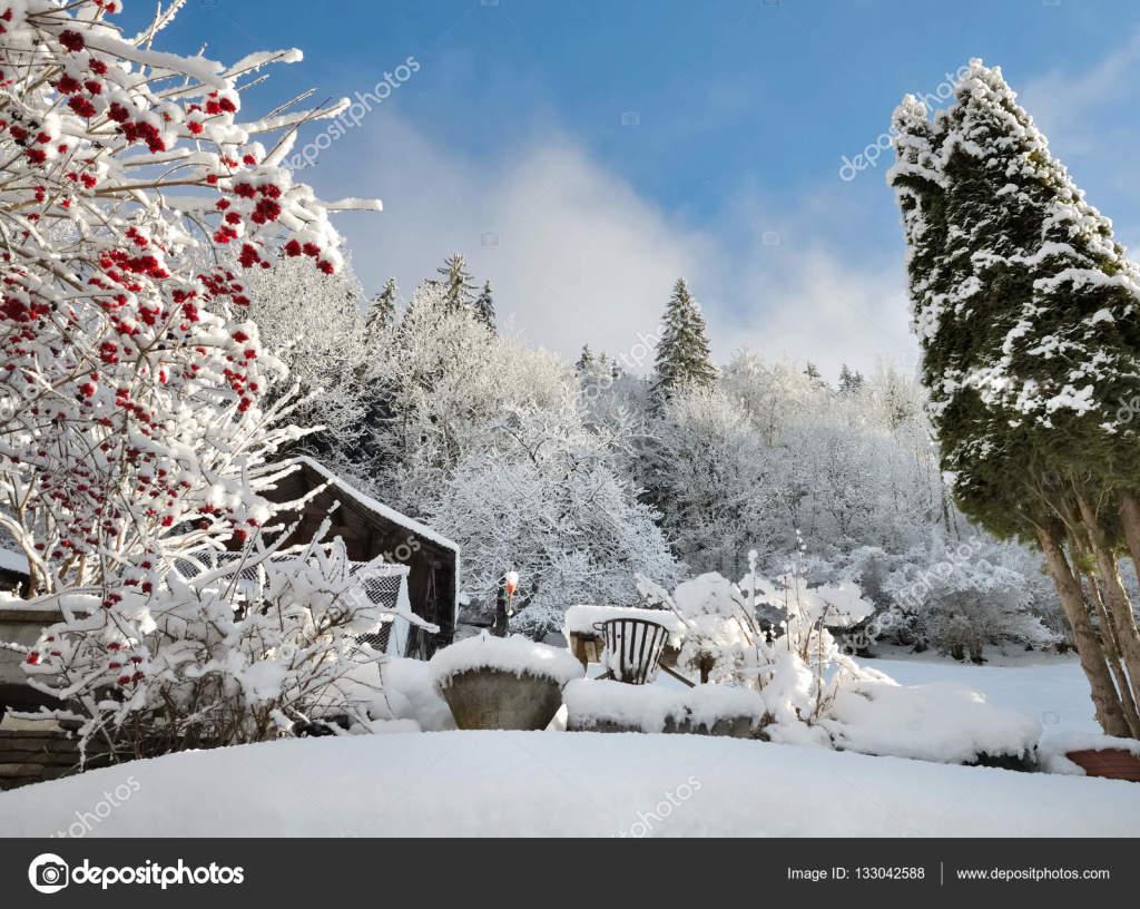 depositphotos_133042588-stock-photo-garden-in-winter
