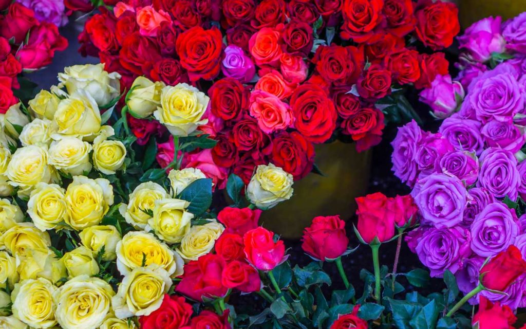 Основные плюсы цветов с доставкой